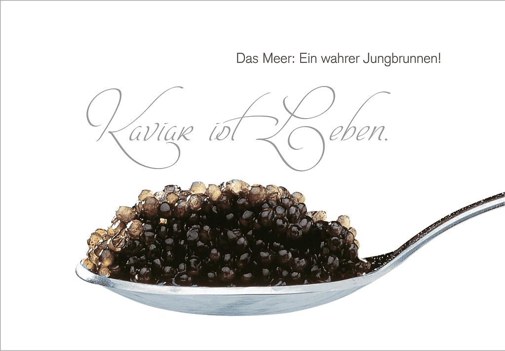 Kaviar ist Leben