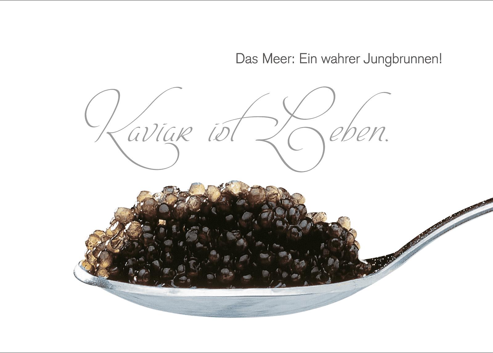 kaviar ist leben chris kosmetikstudio. Black Bedroom Furniture Sets. Home Design Ideas